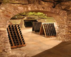 12th century limestone caves are used to store champagne
