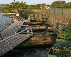 A fish ladder allows for migratory poissons to negotiate the barrage