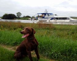 Max Enjoying Us Mooring At Somerleyton