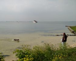 Max cooling off at the Marken shell beach