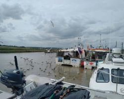 3-Southwold-Fishermen-gutting-their-catch